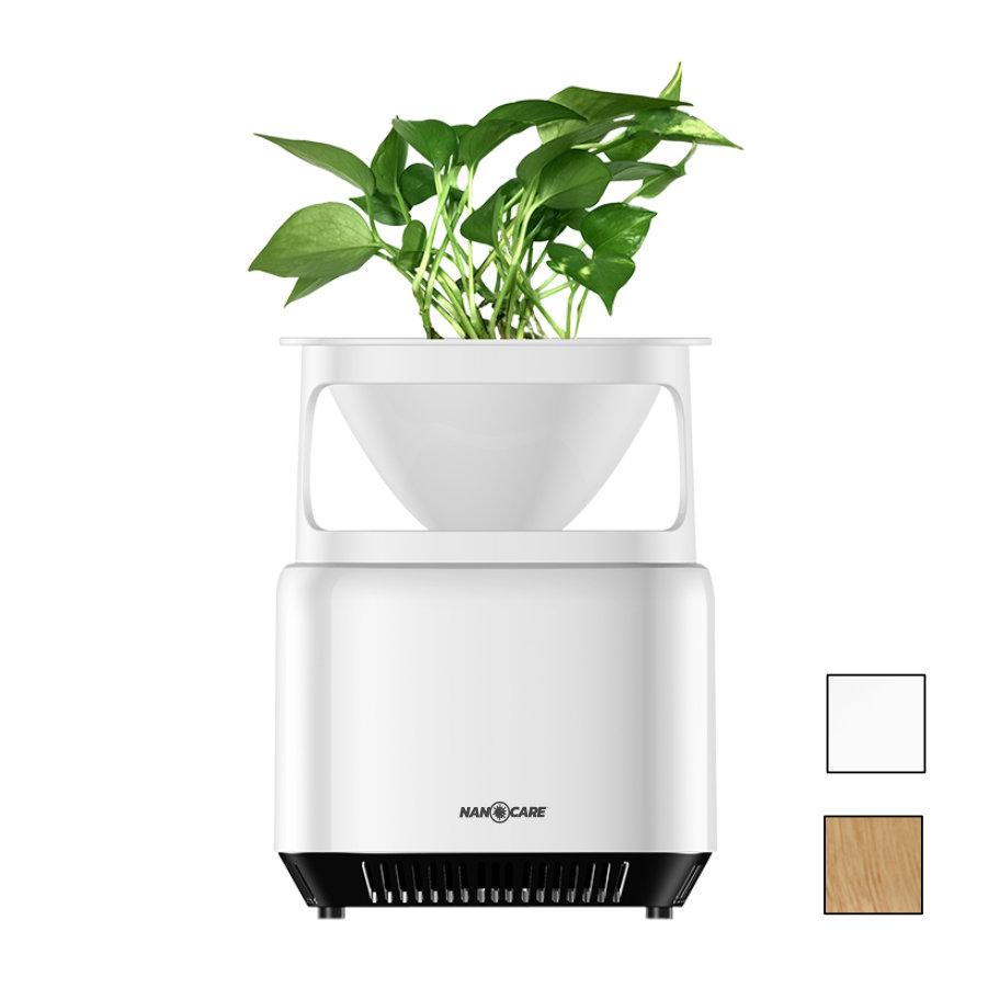 Aseptica Green – Oczyszczacz powietrza